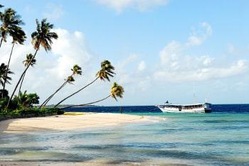 Suivre une formation dans le tourisme